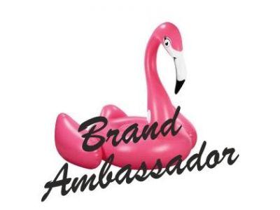 Γίνε Βrand Ambassador. Μπορείς.